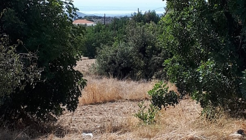 PLOT OF LAND IN APESIA VILLAGE, LIMASSOL