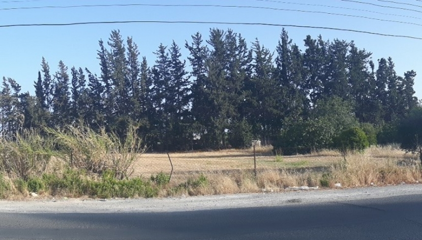 LAND FOR SALE IN KATO POLEMIDIA, LIMASSOL